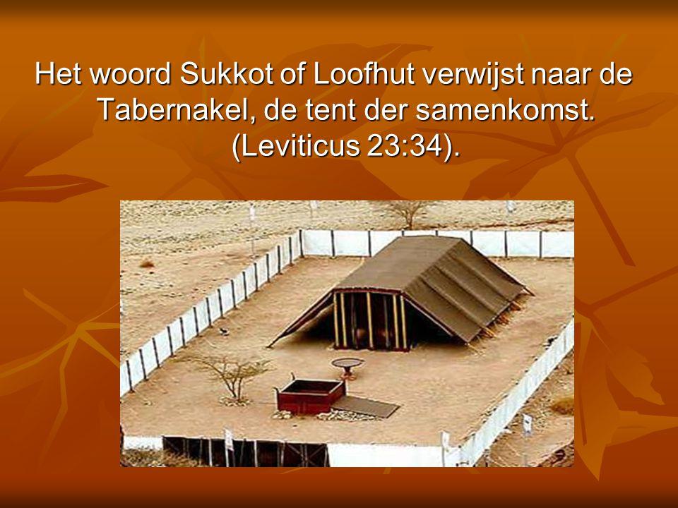 Sukkot Het Slotfeest in de 7e maand tisjri is het Loofhuttenfeest, of Sukkot (Leviticus 23:33-34).