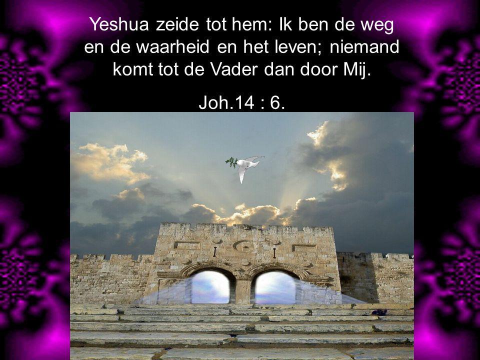 Yeshua dan antwoordde en zeide tot hen: Voorwaar, voorwaar, Ik zeg u, de Zoon kan niets doen van Zichzelf, of Hij moet het de Vader zien doen; want wat deze doet, dat doet ook de Zoon evenzo.