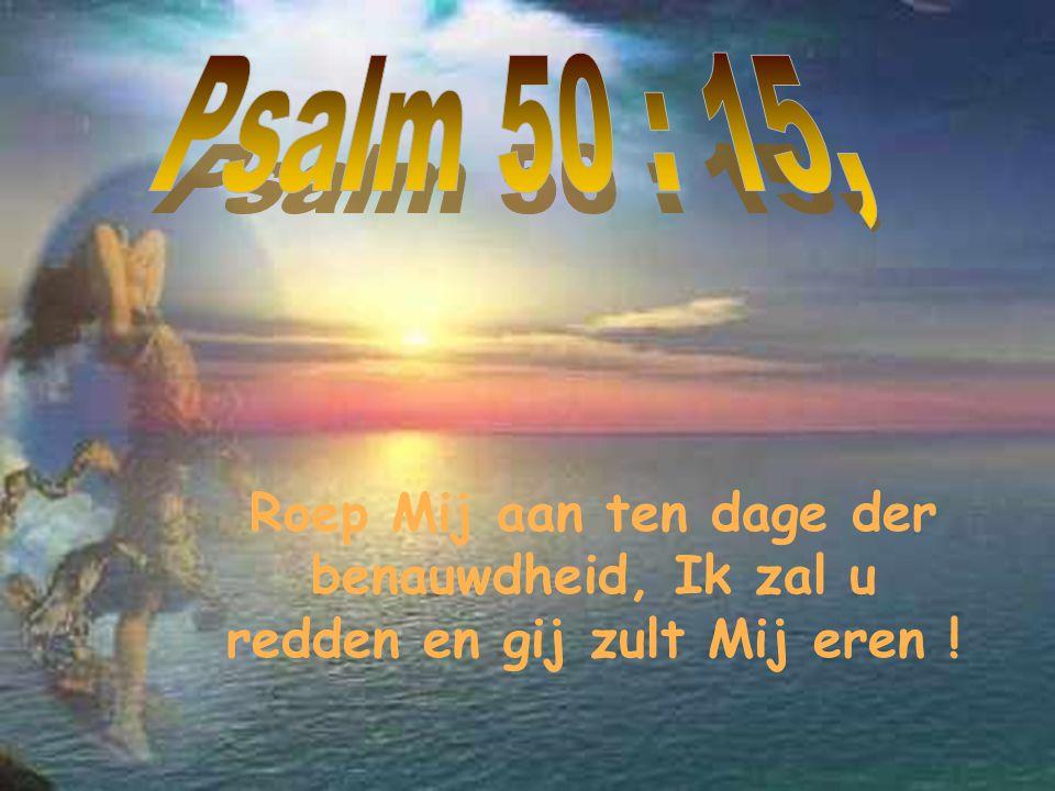 Jes.32:17, En de vrucht der gerechtigheid zal vrede zijn, de uitwerking der gerechtigheid rust en veiligheid tot in eeuwigheid.