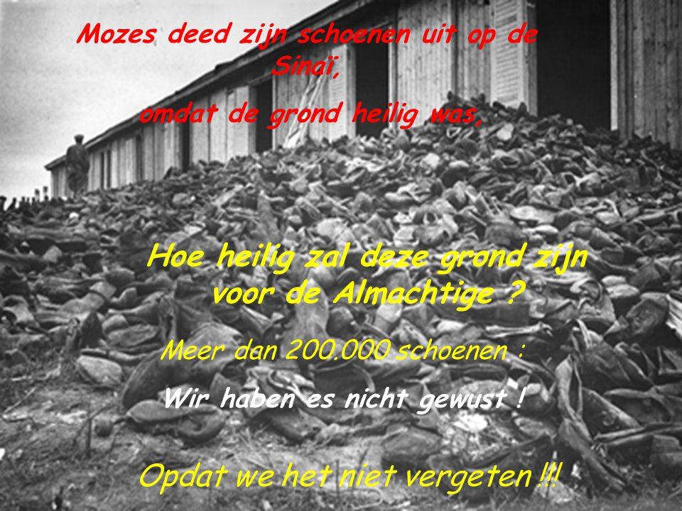 Zach 2 : 8, Want, zo zegt de HERE der heerscharen, wiens heerlijkheid mij gezonden heeft, aangaande de volken die u uitgeplunderd hebben : Want wie u aanraakt, raakt zijn oogappel aan.