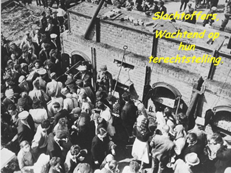 Het concentratiekamp in Majdanek Polen. Het gevolg.