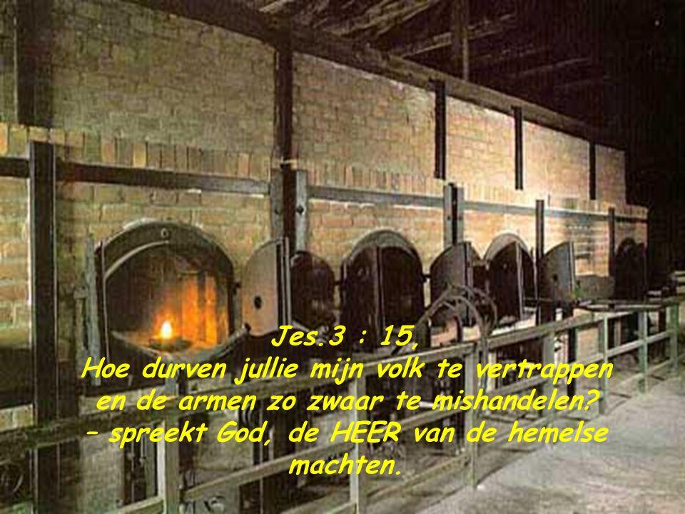 Het labo van Majdanek. Experimenten in