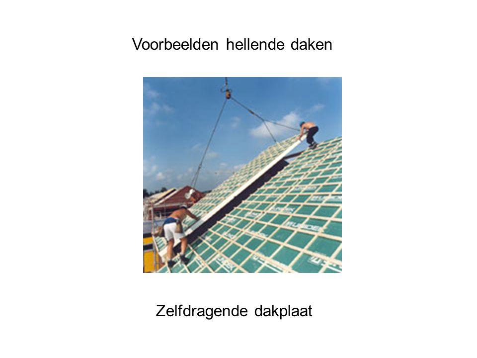 Voorbeelden hellende daken Zelfdragende dakplaat
