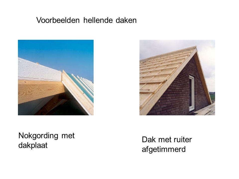 Voorbeelden hellende daken Nokgording met dakplaat Dak met ruiter afgetimmerd