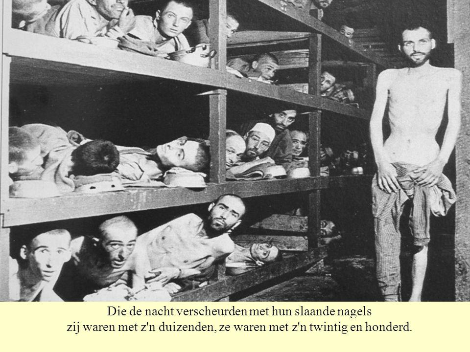 Ze waren met z n twintig en honderd, zij waren met z n duizenden naakt en mager, bevend, in de verzegelde beestenwagens.