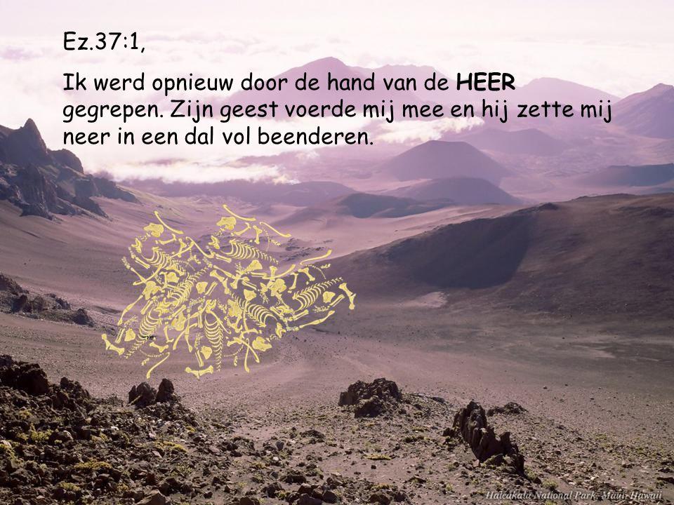Ez.37:1, Ik werd opnieuw door de hand van de HEER gegrepen.