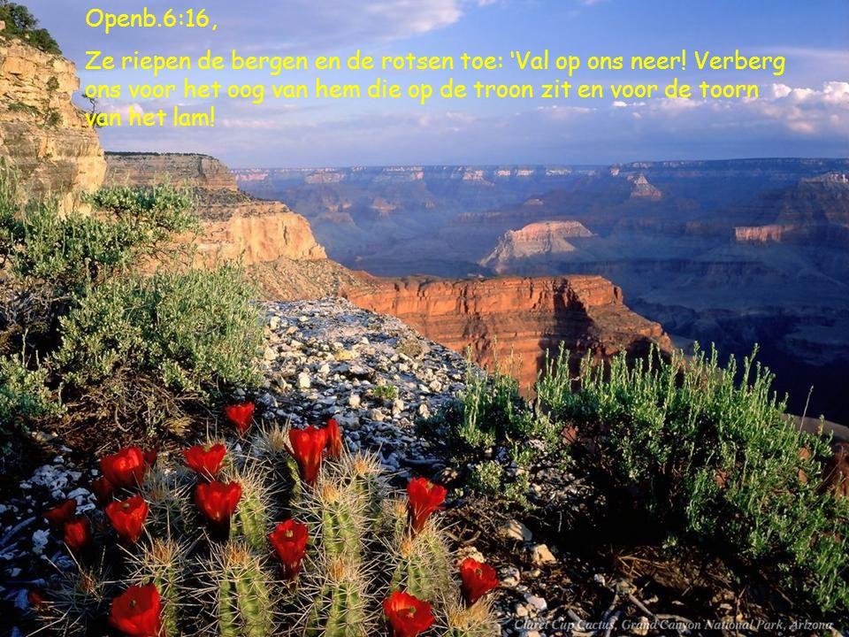 Openb.6:16, Ze riepen de bergen en de rotsen toe: 'Val op ons neer.