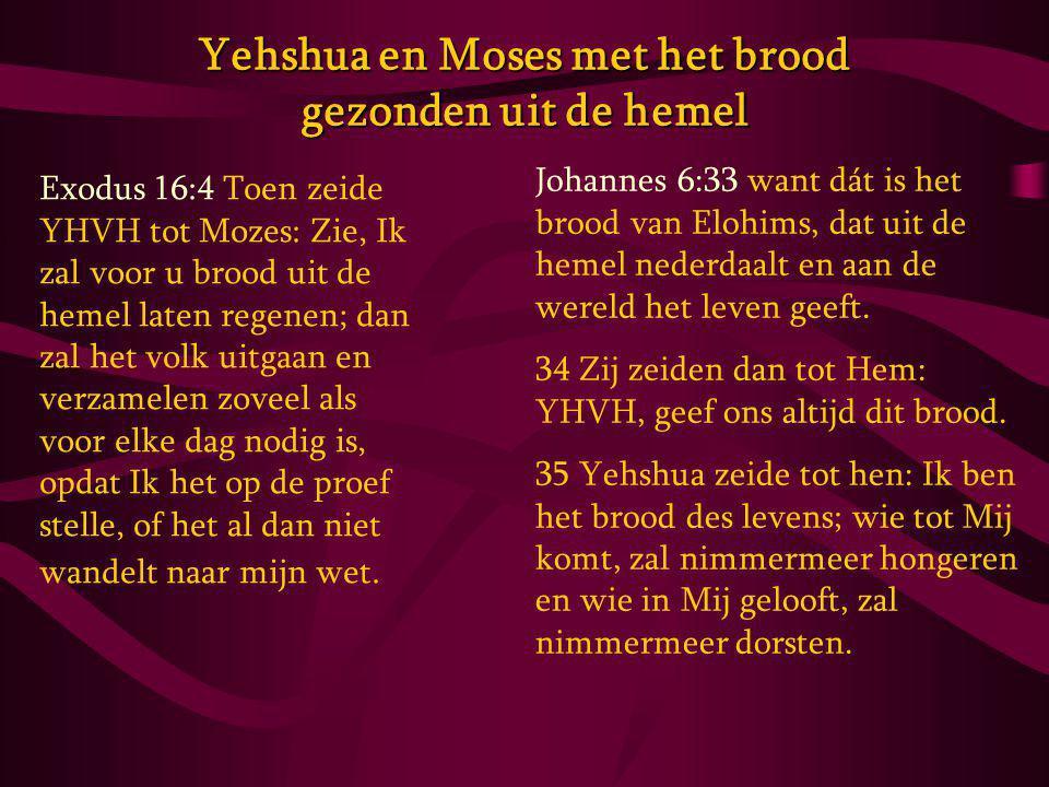 Yehshua en Moses met het brood gezonden uit de hemel Exodus 16:4 Toen zeide YHVH tot Mozes: Zie, Ik zal voor u brood uit de hemel laten regenen; dan zal het volk uitgaan en verzamelen zoveel als voor elke dag nodig is, opdat Ik het op de proef stelle, of het al dan niet wandelt naar mijn wet.