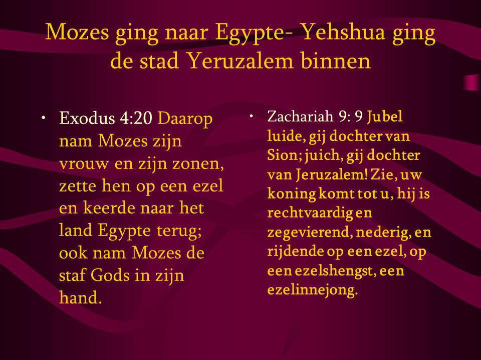 Mozes ging naar Egypte- Yehshua ging de stad Yeruzalem binnen Exodus 4:20 Daarop nam Mozes zijn vrouw en zijn zonen, zette hen op een ezel en keerde naar het land Egypte terug; ook nam Mozes de staf Gods in zijn hand.