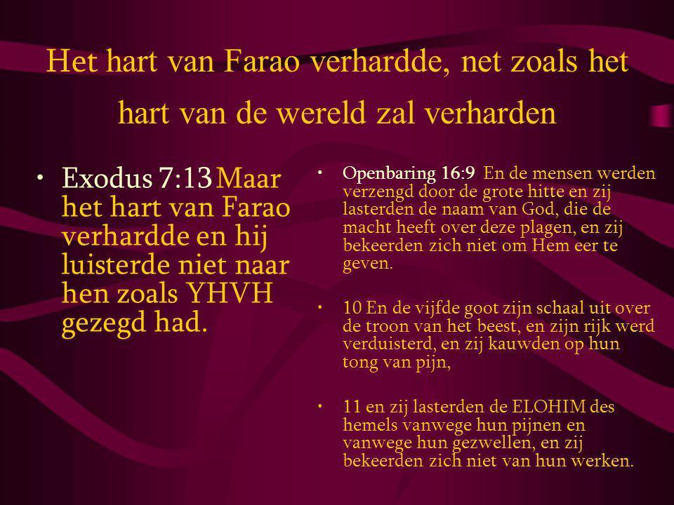 Het hart van Farao verhardde, net zoals het hart van de wereld zal verharden Exodus 7:13 Maar het hart van Farao verhardde en hij luisterde niet naar hen zoals YHVH gezegd had.