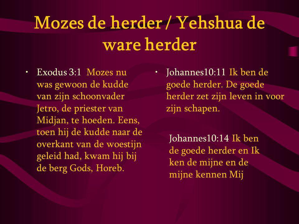 Mozes de herder / Yehshua de ware herder Exodus 3:1 Mozes nu was gewoon de kudde van zijn schoonvader Jetro, de priester van Midjan, te hoeden.