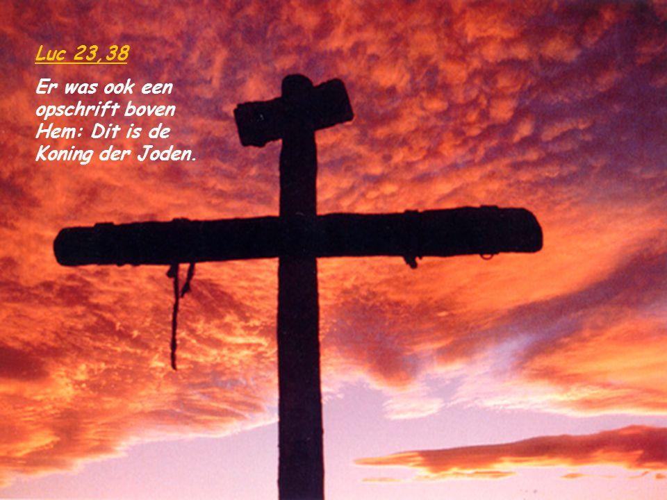 …. ; die zelf onze zonden in zijn lichaam op het hout gebracht heeft, opdat wij, aan de zonden afgestorven, voor de gerechtigheid zouden leven ; en do