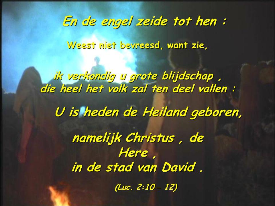 En de engel zeide tot hen : Weest niet bevreesd, want zie, ik verkondig u grote blijdschap, die heel het volk zal ten deel vallen : U is heden de Heiland geboren, namelijk Christus, de Here, in de stad van David.