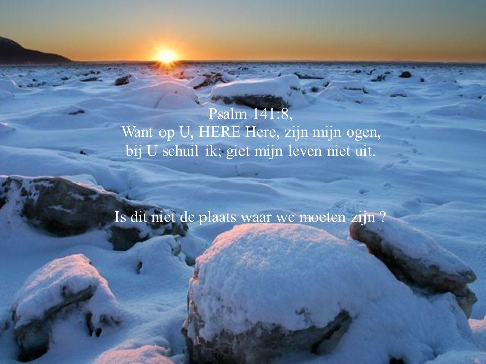 Spr.8:17, Ik heb lief wie mij liefhebben, wie mij ijverig zoeken, zullen mij vinden. Waar wacht je op ? Zoek en vindt !