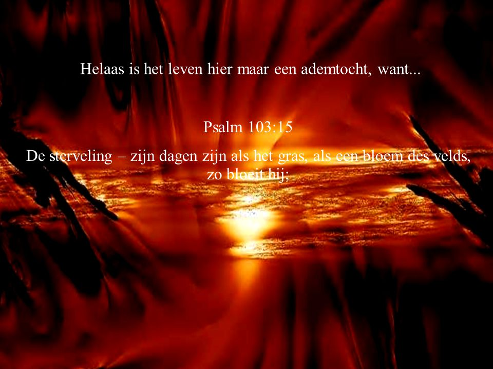 Jes.60:19 De zon zal u niet meer tot licht zijn bij dag, noch de maan tot een schijnsel voor u lichten; maar de HERE zal u tot een eeuwig licht zijn en uw God tot uw luister