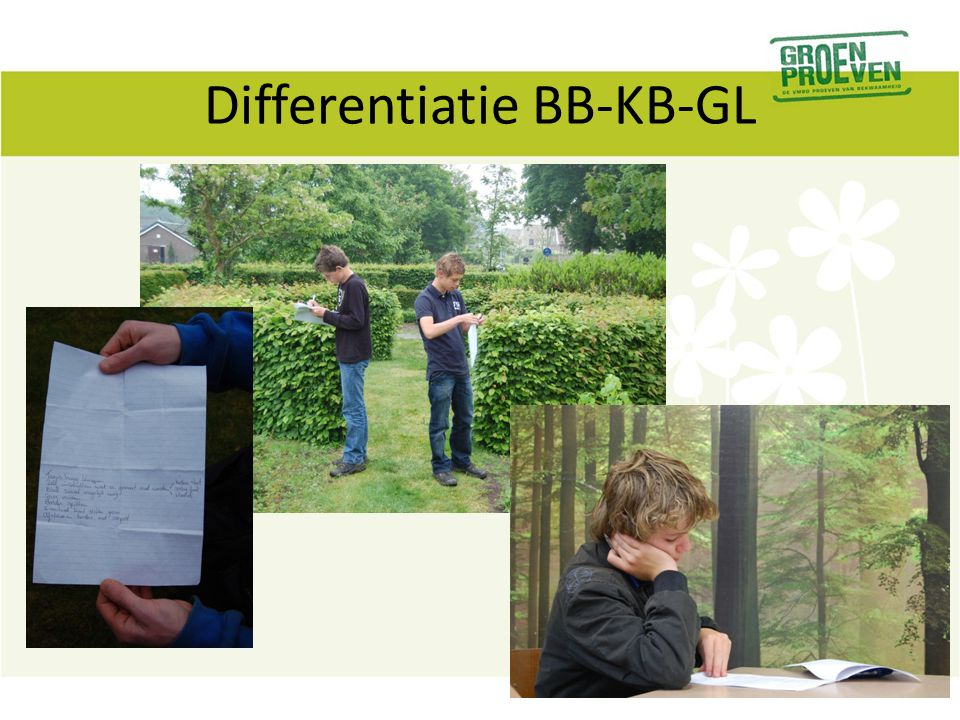 Differentiatie BB-KB-GL