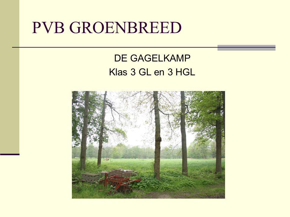 PVB GROENBREED DE GAGELKAMP Klas 3 GL en 3 HGL