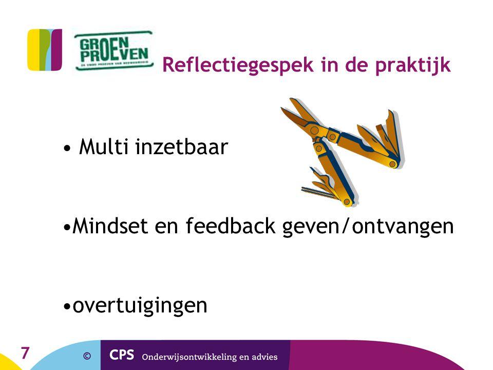 7 Reflectiegespek in de praktijk Multi inzetbaar Mindset en feedback geven/ontvangen overtuigingen