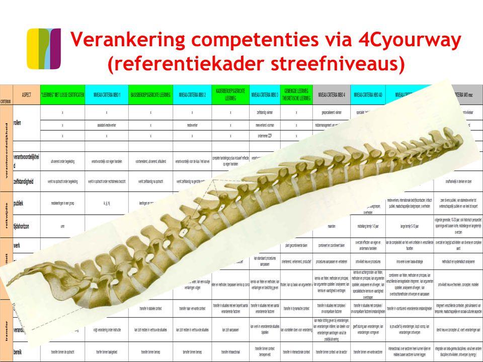 18 Verankering competenties via 4Cyourway (referentiekader streefniveaus)