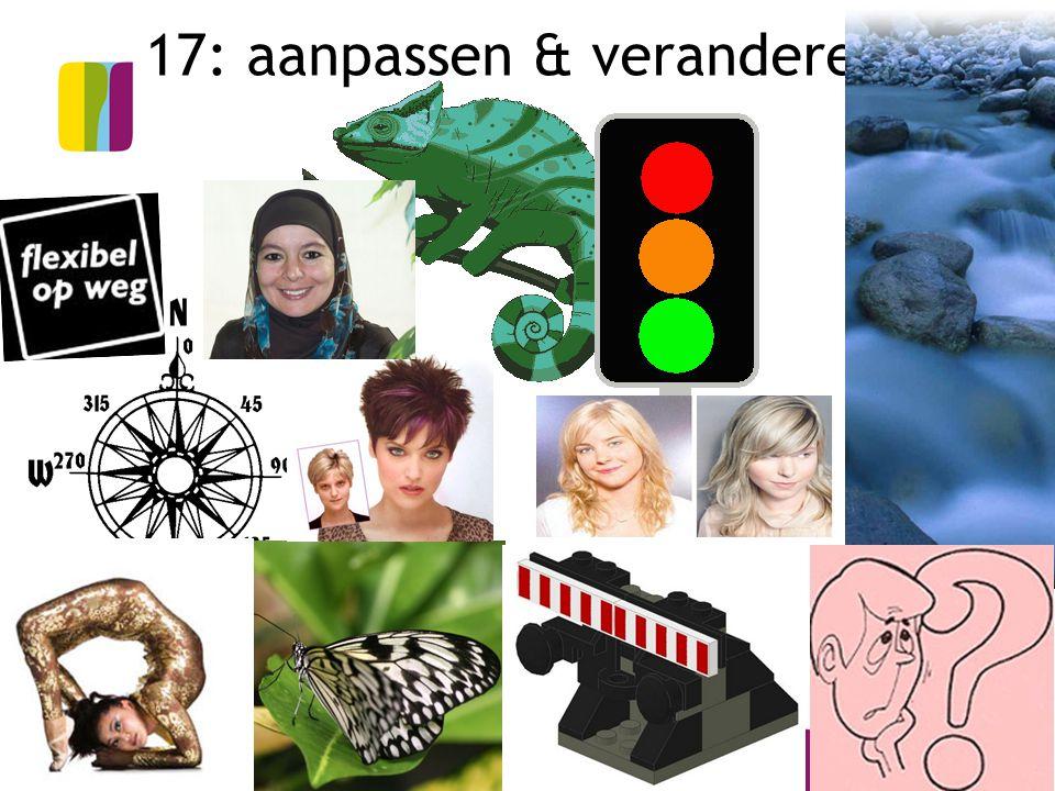 18 17: aanpassen & veranderen