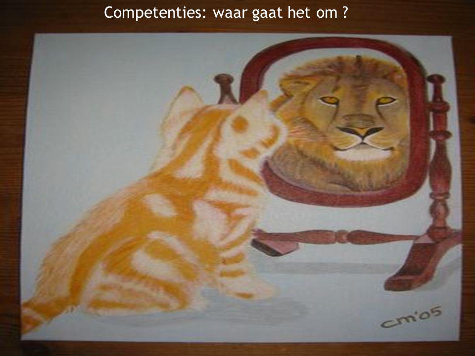 2 Competenties: waar gaat het om ?