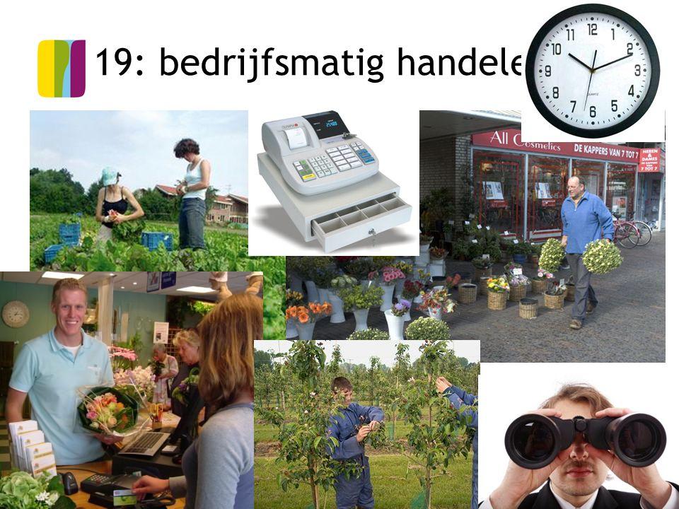 20 19: bedrijfsmatig handelen