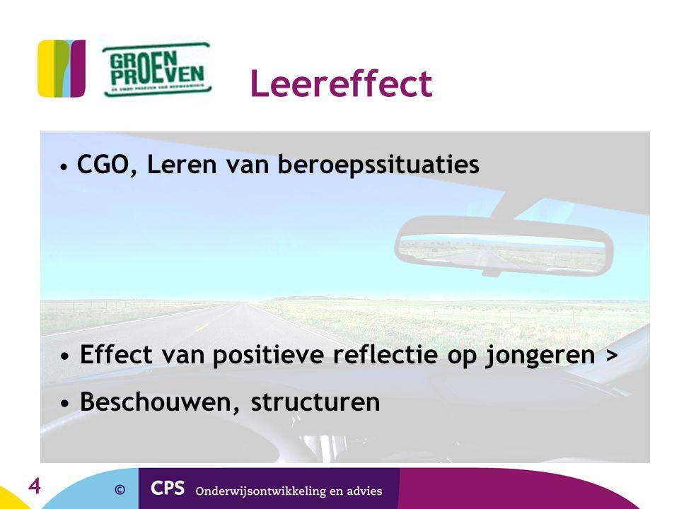 4 Leereffect CGO, Leren van beroepssituaties Effect van positieve reflectie op jongeren > Beschouwen, structuren