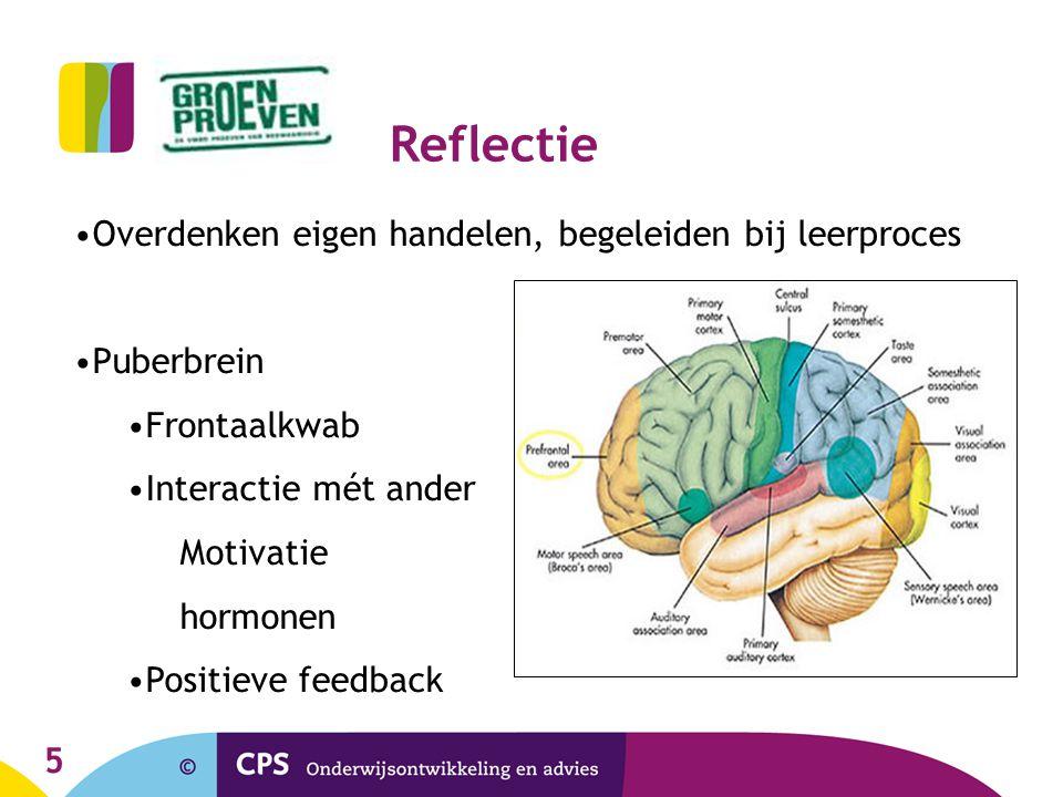 5 Reflectie Overdenken eigen handelen, begeleiden bij leerproces Puberbrein Frontaalkwab Interactie mét ander Motivatie hormonen Positieve feedback