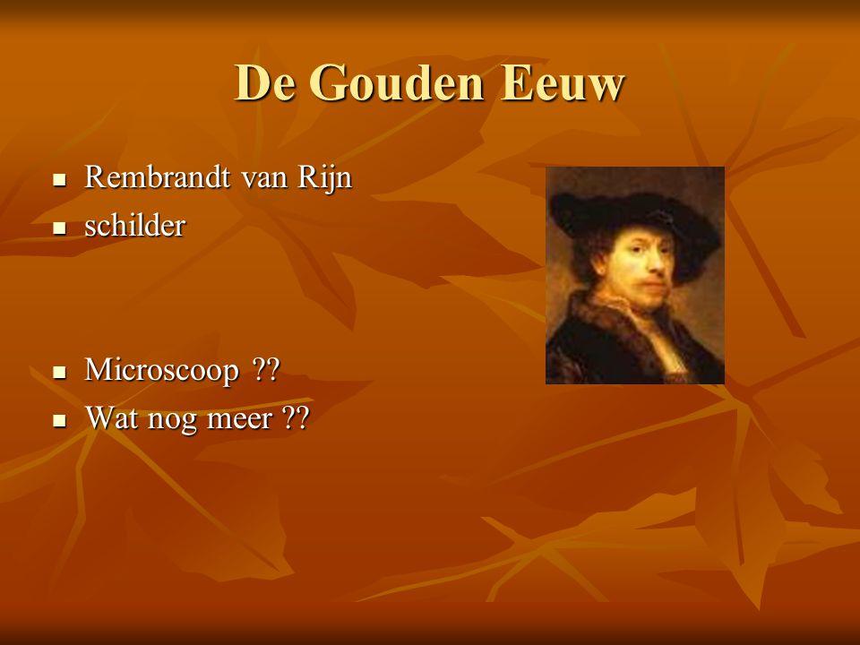 De Gouden Eeuw Rembrandt van Rijn Rembrandt van Rijn schilder schilder Microscoop ?.