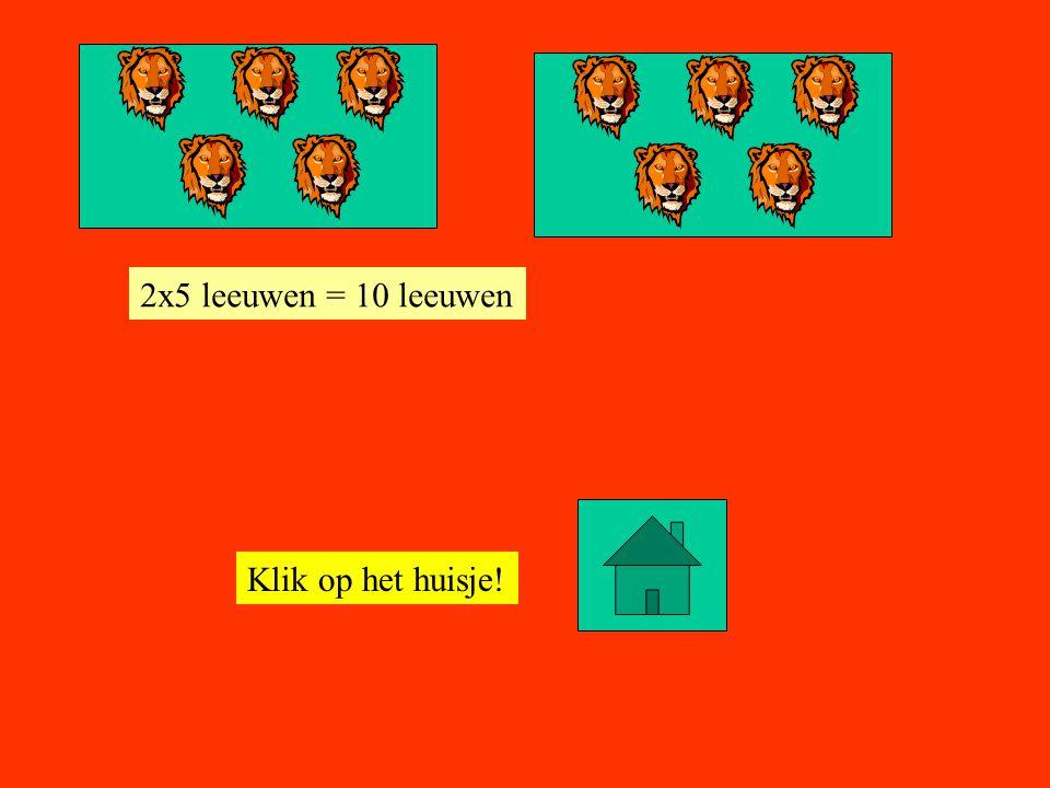 Klik op het huisje! 3x5 leeuwen = 15 leeuwen