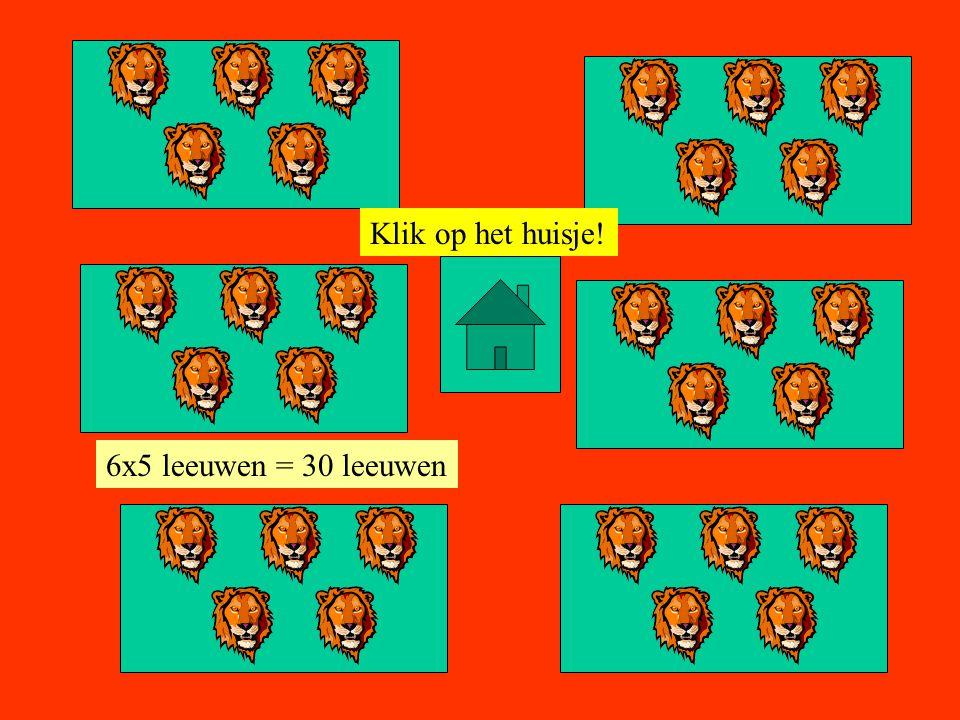 Klik op het huisje! 7x5 leeuwen = 35 leeuwen