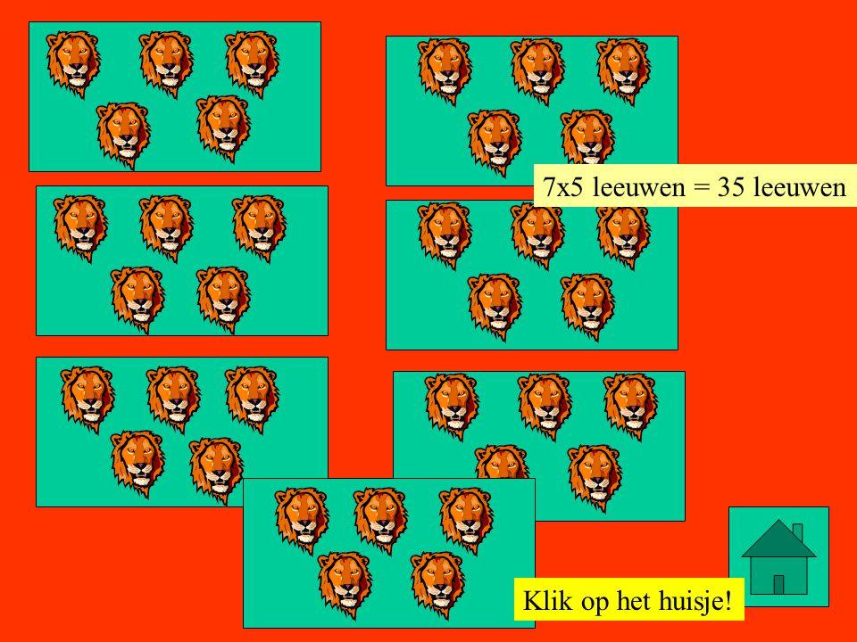 Klik op het huisje! 8x5 leeuwen = 40 leeuwen