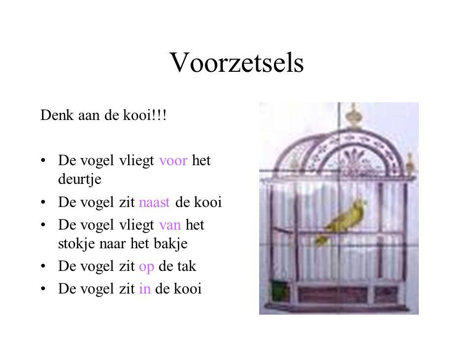 Voorzetsels Denk aan de kooi!!.