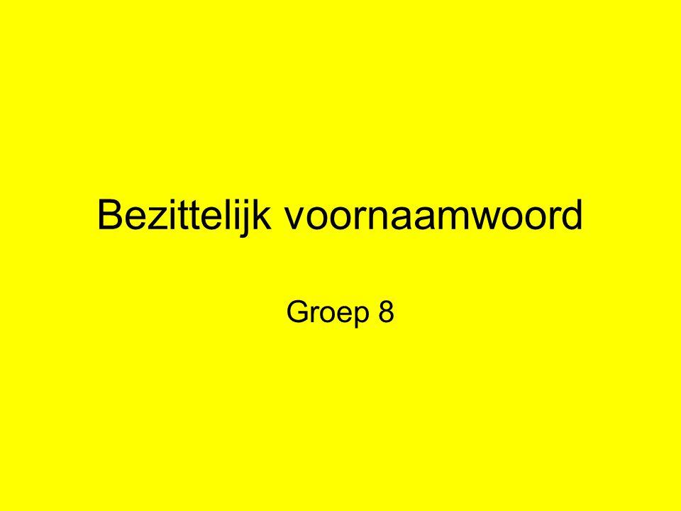 Bezittelijk voornaamwoord Groep 8
