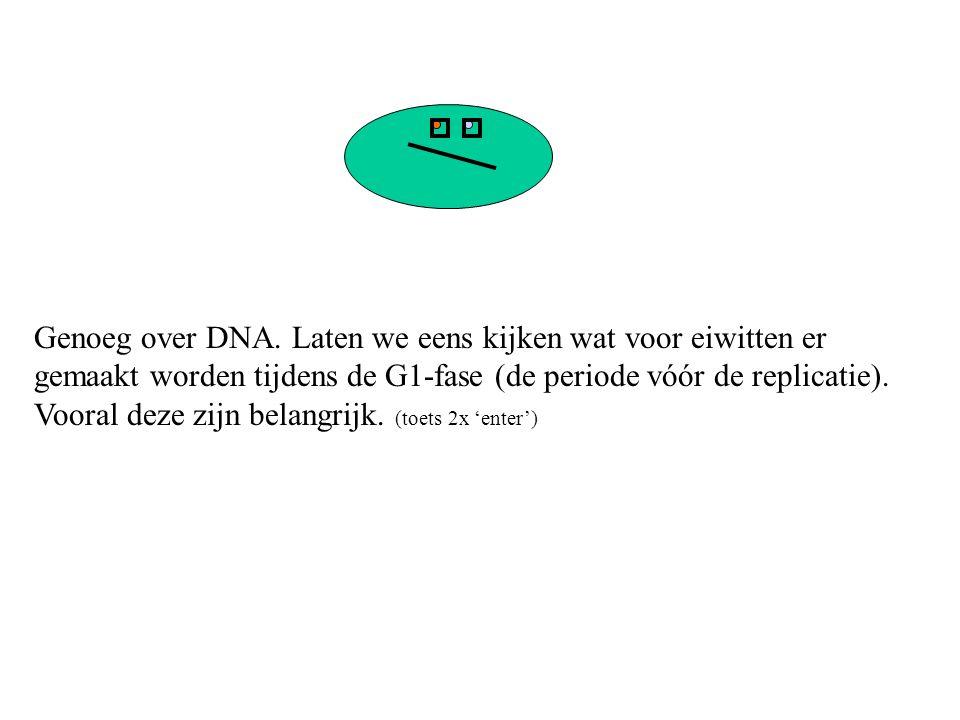 Dit eiwit heet DNA-polymerase.Hij zorgt ervoor dat het DNA verdubbeld kan worden.