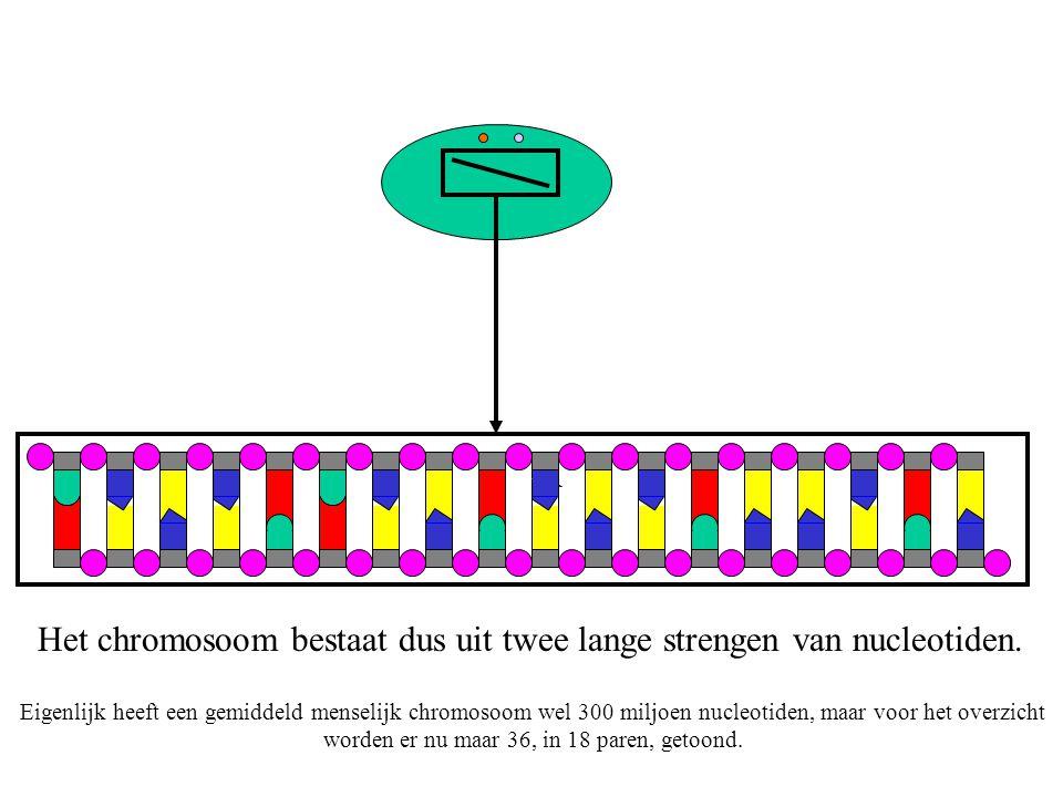 Genoeg over DNA.