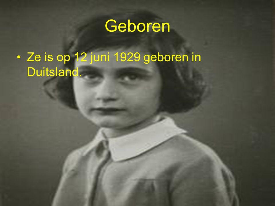 Anne frank Wij doen onze geschiedenis studie over Anne Frank.