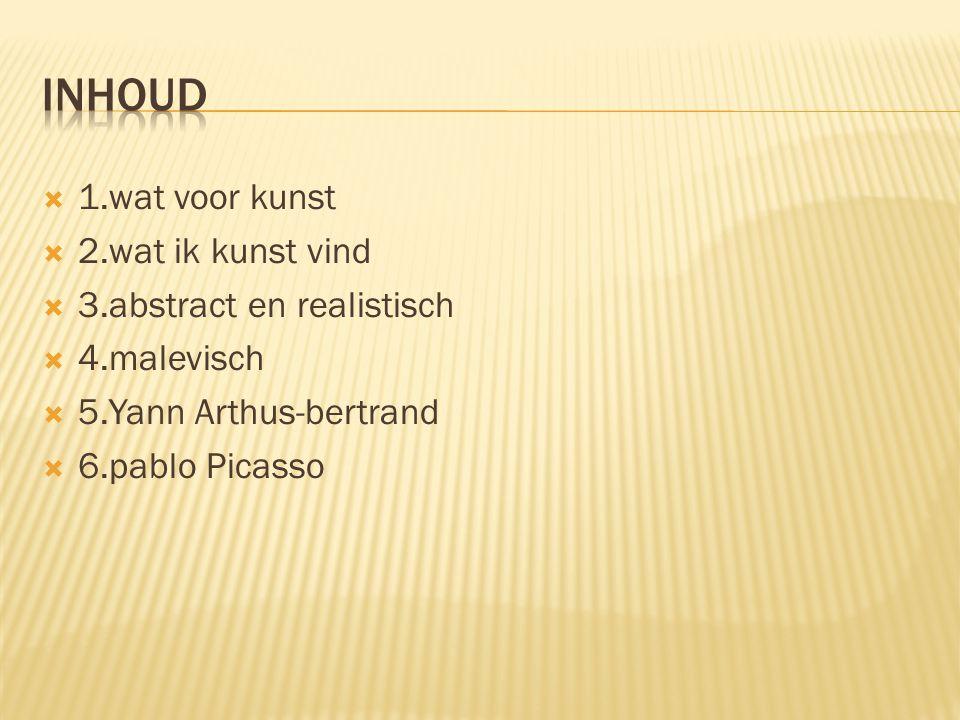  1.wat voor kunst  2.wat ik kunst vind  3.abstract en realistisch  4.malevisch  5.Yann Arthus-bertrand  6.pablo Picasso
