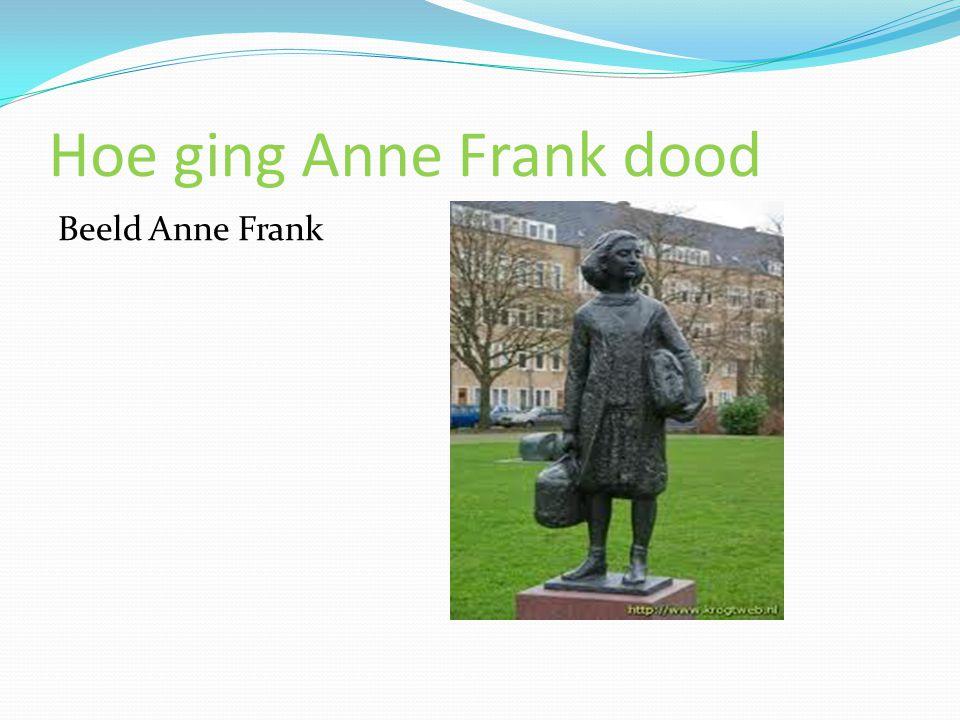 Hoe ging Anne Frank dood Beeld Anne Frank