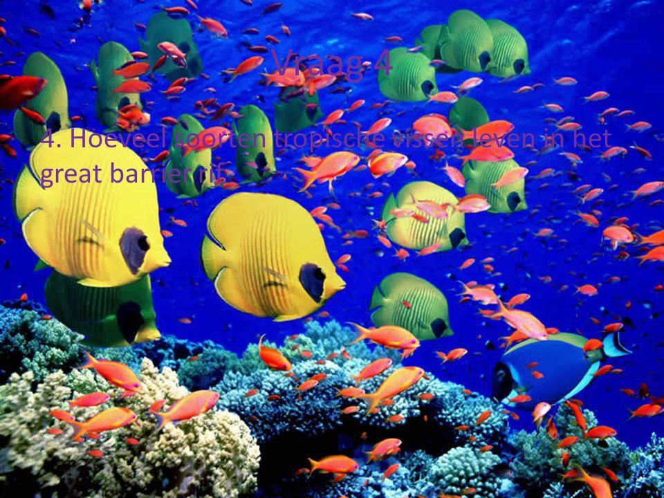 Vraag 4 4. Hoeveel soorten tropische vissen leven in het great barrier rif