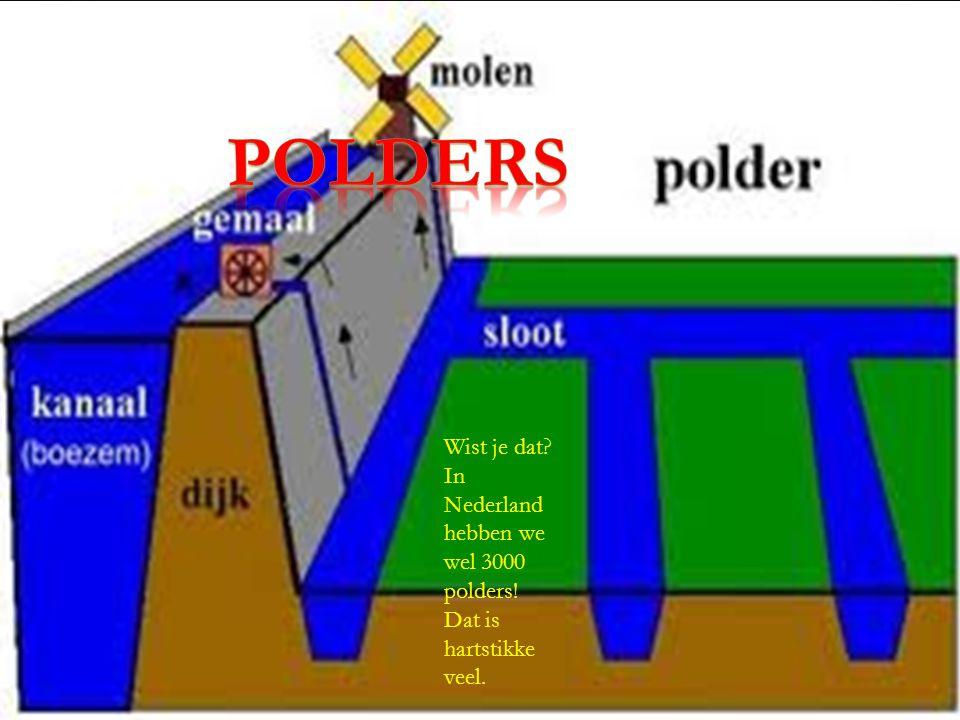 Wist je dat? In Nederland hebben we wel 3000 polders! Dat is hartstikke veel.