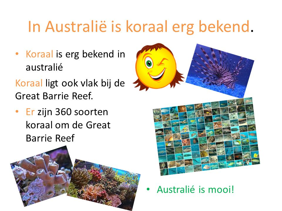 In Australië is koraal erg bekend. Koraal is erg bekend in australié Koraal ligt ook vlak bij de Great Barrie Reef. Er zijn 360 soorten koraal om de G