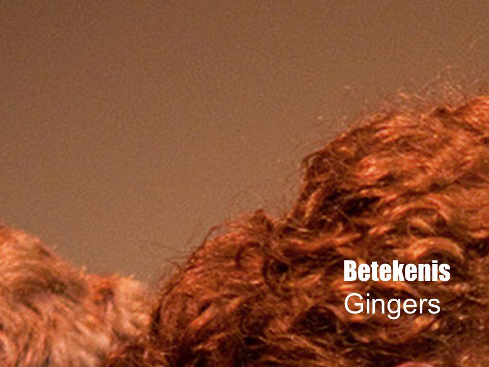 Betekenis Gingers