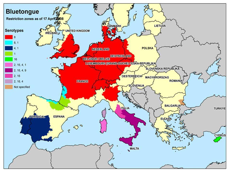 Gemiddeld aantal besmette bedrijven in België in 2006 en 2007 (uitgevlakt per week)
