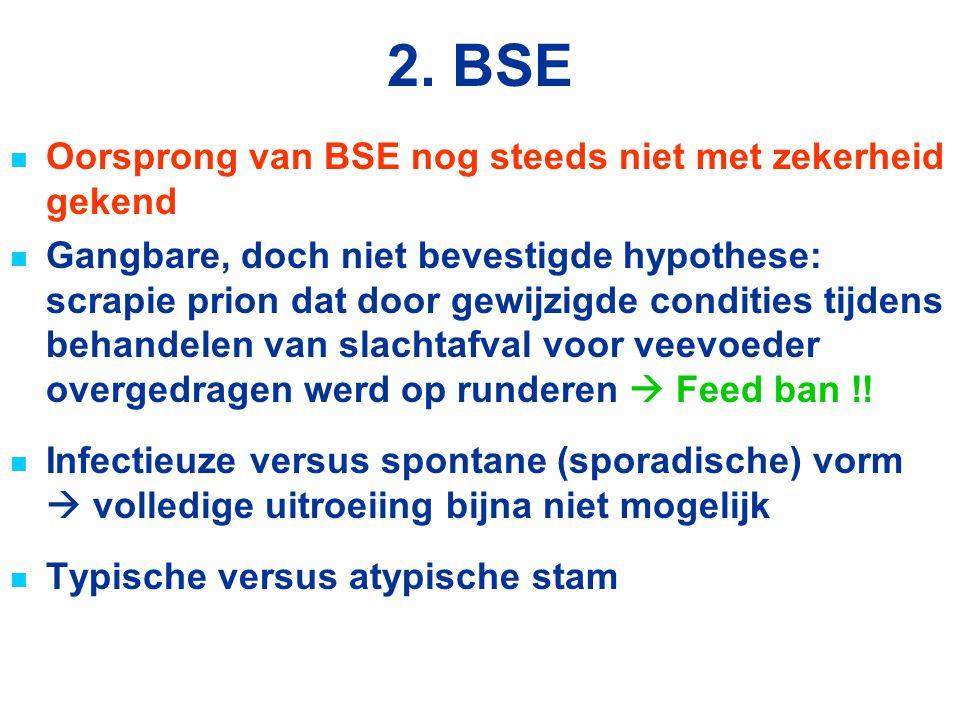2. BSE Oorsprong van BSE nog steeds niet met zekerheid gekend Gangbare, doch niet bevestigde hypothese: scrapie prion dat door gewijzigde condities ti