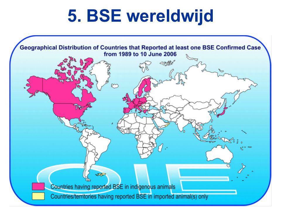 5. BSE wereldwijd