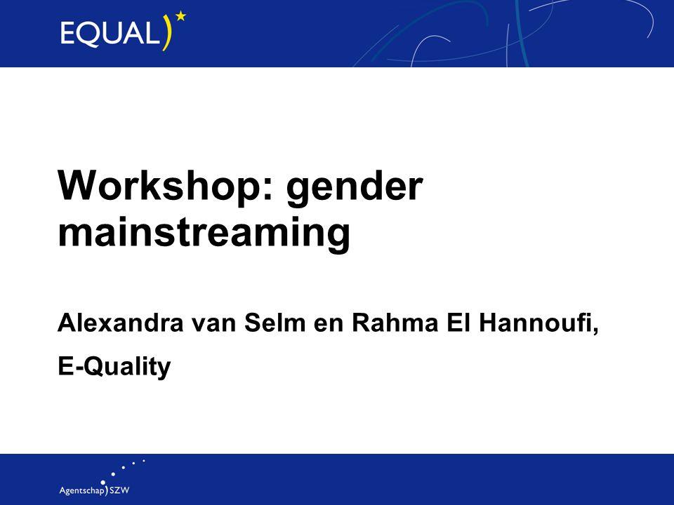 Workshop: gender mainstreaming Alexandra van Selm en Rahma El Hannoufi, E-Quality