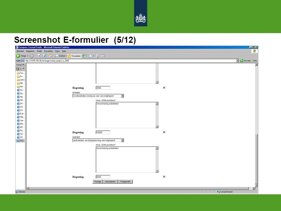 Screenshot E-formulier (5/12)