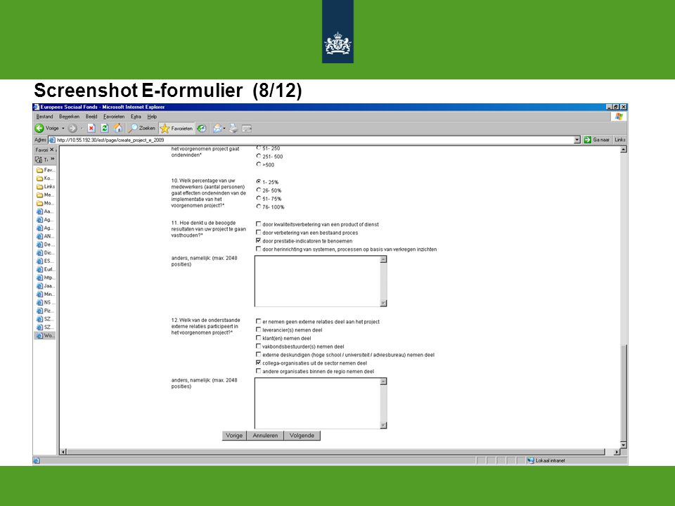 Screenshot E-formulier (8/12)