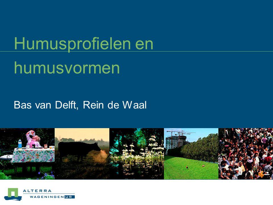 Humusprofielen en humusvormen Bas van Delft, Rein de Waal
